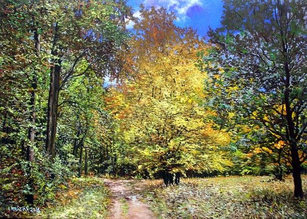 Lesní rozcestí
