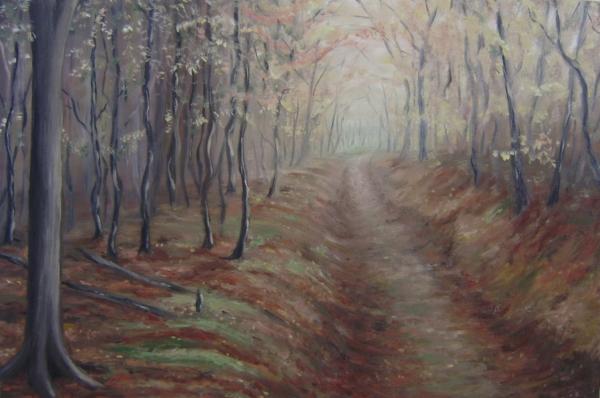 ..lesní cesta