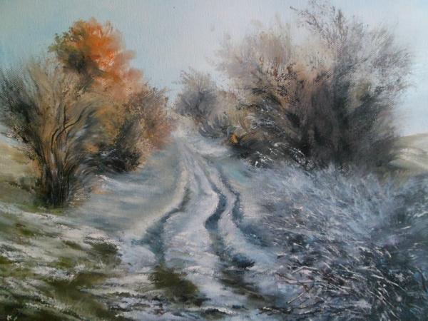 Lednová procházka