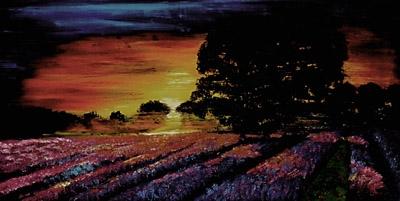 stmívání nad levandul. polem