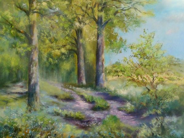 Jarní les