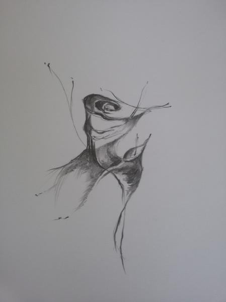 Ilustrace III