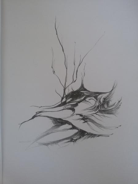 Ilustrace IV
