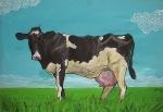 kráva luční