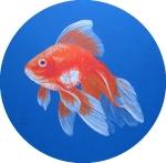 Zlatá rybka II.