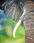 elephant II.