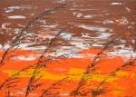 Tráva v hnedej farbe