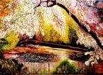 jaro v plném květu u vody