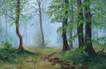 Cesta v lese..