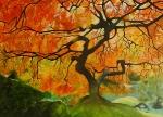 Strom života-prodáno
