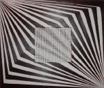zebra vzor